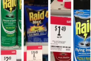 FREE: Raid Bug Killer Products at KMART!