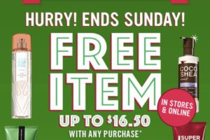 Run: FREE Item with ANY Purchase at Bath & Body Works!!!